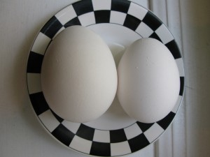 two large eggs: due uova grosse, in inglese = two large eggs