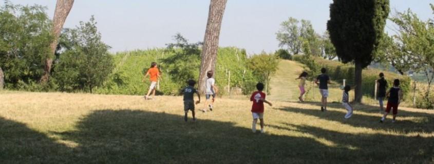 campo estivo in inglese, Apple Tree Scuola di inglese, Bologna