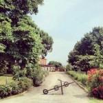 campo estivo a San Lazzaro in inglese. Campi solari a Bologna e San Lazzaro con Apple Tree scuola di inglese, Bologna