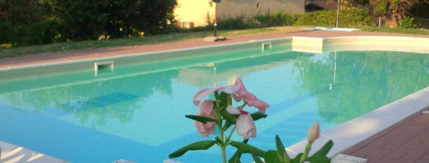 Campo estivo in inglese a zola predosa - Zola predosa piscina ...